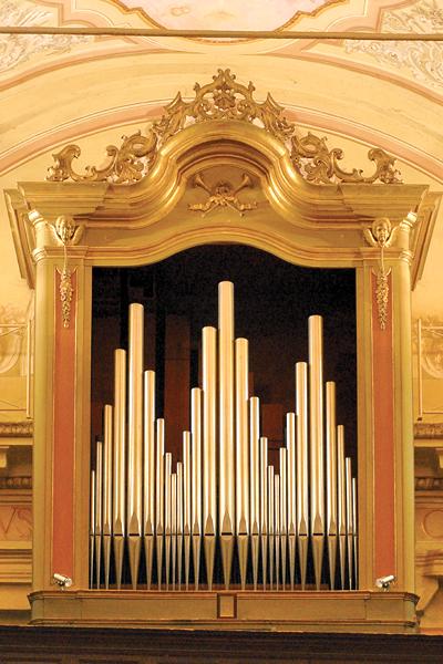organo-mombercelli-1